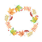 Vector watercolor circle frame with autumn leaves and berries Royalty Free Stock Photo