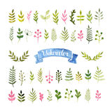 Vector watercolor collection Royalty Free Stock Photo