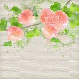 Vector Watercolor Creative Background Stock Photography