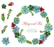 Vector watercolor element and frame of flowers. Stock Photo