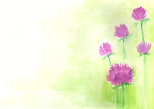 Vector watercolor floral background Royalty Free Stock Photo