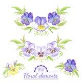 Vector watercolor floral elements. Stock Photos