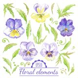 Vector watercolor floral elements. Royalty Free Stock Photos