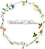 Vector watercolor floral frame. With wild flowers, hand drawn vector template royalty free illustration