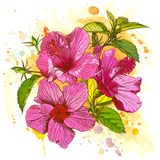 Vector watercolor flower Stock Images