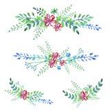 Vector watercolor flowers set Stock Photos