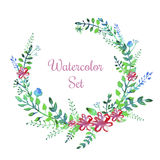 Vector watercolor flowers set Stock Photography