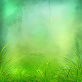 Vector Watercolor Green Grass Background Royalty Free Stock Photos