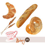 Vector watercolor hand drawn bakery set with Royalty Free Stock Image