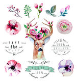 Vector watercolor hand drawn floral set with deer Stock Photo