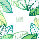 Vector watercolor hand drawn green leaves, grunge background. Royalty Free Stock Photography