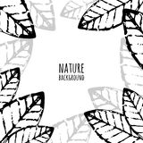 Vector watercolor hand drawn leaves, grunge background. Royalty Free Stock Photography