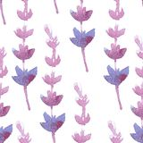 Vector watercolor lavender delicate bunch Royalty Free Stock Photography