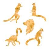 Vector watercolor lemur Royalty Free Stock Photos