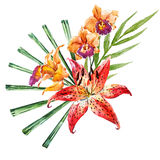 Vector watercolor lilies Stock Photography