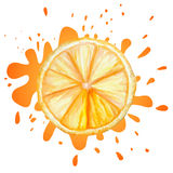 Vector watercolor orange Stock Photography