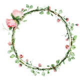 Vector watercolor round frame with roses and foliage elements. Hand draw floral border. Design royalty free illustration