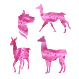 Vector watercolor silhouettes of a lama Royalty Free Stock Images