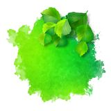 Vector watercolor spot with green leaves Royalty Free Stock Photos