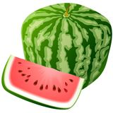 Vector watermelon. Vector square watermelon isolated on white Stock Photos