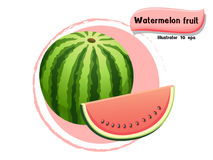 Vector Watermelon fruit isolated on color background,illustrator 10 eps. Watermelon fruit isolated on color background,illustrator 10 eps Royalty Free Stock Photo