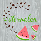 Vector watermelon and seeds. lettering. Vector watermelon and seeds. Hand draw leterring Stock Photography