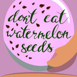Vector watermelon and seeds. lettering.Pregnancy. Vector watermelon and seeds. Hand draw leterring.Pregnancy Stock Image