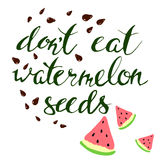 Vector watermelon and seeds. lettering.Pregnancy. Vector watermelon and seeds. Hand draw leterring.Pregnancy Stock Images