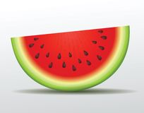Vector watermelon slice. Isolated. This is file of EPS10 format Stock Photos