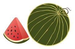 Vector watermelon slice of watermelon and whole Royalty Free Stock Images