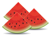 vector watermelon slices Stock Photo
