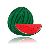 Vector watermelon Royalty Free Stock Photo