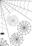 Vector web. Set -  webs and spider. Isolated over white Stock Photography