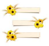 Vector web banners with sunflowers and ears of wheat. Eps-10. Three vector web beige banners with sunflowers, daisies and ears of wheat Royalty Free Stock Photography