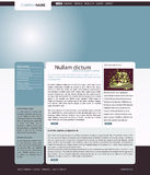 Vector web site layout Stock Image