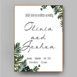 Vector wedding invite invitation save the date floral card design. Green fern, forest leaves herbs,. Greenery plant mix Royalty Free Stock Images