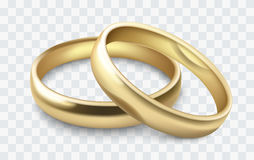 Vector wedding rings. Vector gold wedding rings  on white Royalty Free Stock Photography