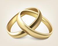 Vector wedding rings. Vector gold wedding rings  on white Stock Image