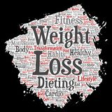 Vector weight loss healthy diet transformation. Vector conceptual weight loss healthy diet transformation paint brush paper word cloud isolated background Royalty Free Stock Image