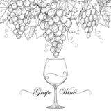 Vector Weintraube, Traubenblätter und Weinglas Stockfotos