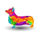 Vector welsh dog animal illustration pet Stock Image