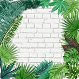 Vector white brick wall and green tropical palm leaves. Summer or spring trendy interior background with place for text. Nature square frame and old vector illustration