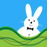 Vector white bunny with bow tie Royalty Free Stock Images