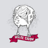 Vector white crow vector illustration