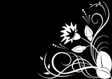 Vector white flora on black background. White flora on black background stock illustration