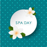 Vector white frangipani (plumeria) flower on polka dot background. Spa banner. Stock Photos