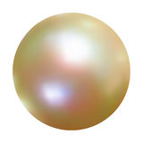Vector White Pearl. EPS 8 Stock Photography