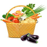 Vector Wicker Basket with Vegetables Royalty Free Stock Images