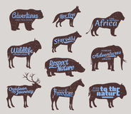 Vector wild animals silhouettes. Wild life adventures icons Royalty Free Stock Images
