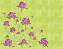 Vector wild flowers. Seamless form backdrops for the design of fabrics and wallpapers in vector Stock Photography